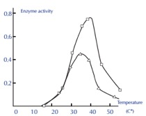 enzyme-temperature