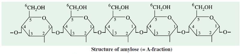 Amylose