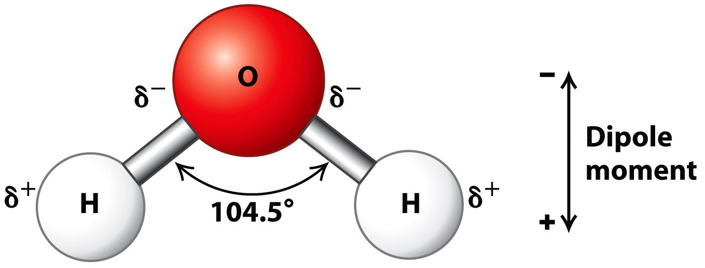 The Shape Of The Water Molecule H2o Is - Water Ionizer H2o Water Structure